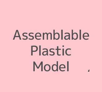 Assemblable Plastic Model